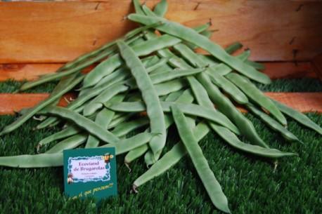 Mongeta verda